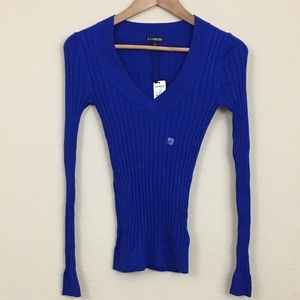 NWT Express Stretchy Deep V-neck Sweater XS